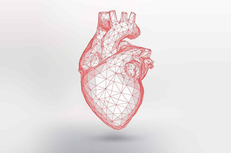 کلینیک قلب کلینیک قلب در مشهد درمانگاه قلب درمانگاه قلب اطفال درمانگاه اورژانس قلب سکته قلبی